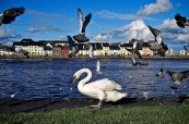 Galway je menší irské město, velice oblíbené u studentů angličtiny, Atlantic Language