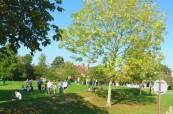 Prostřední střední školy Brockenhurst College v Anglii je opravdu klidné a bezpečné
