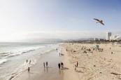 V Los Angeles najdeme krásné pláže, kde se konají i některé volnočasové aktivity studentů EC Los Angeles USA