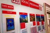 Pro studenty anglického jazyka je každý týden organizován bohatý sociální program, TIS Torquay